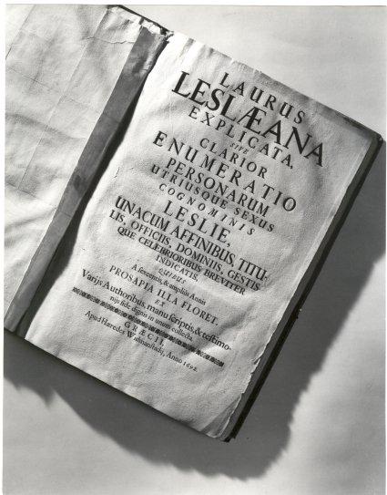 B1: Laurus Leslaeana